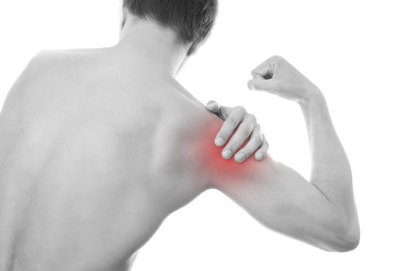 sistema muscolo-scheletrico